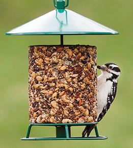 Shop all Bird Seed Blocks & Cakes