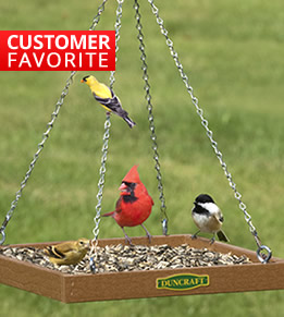 Shop All Platform Feeders