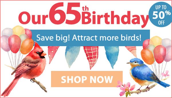 It's Our 65th Birthday! Celebrate and Save Big to Attract More Birds!