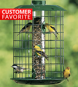 Over 200 Squirrel-Proof Feeders