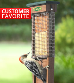 Shop all Suet Feeders